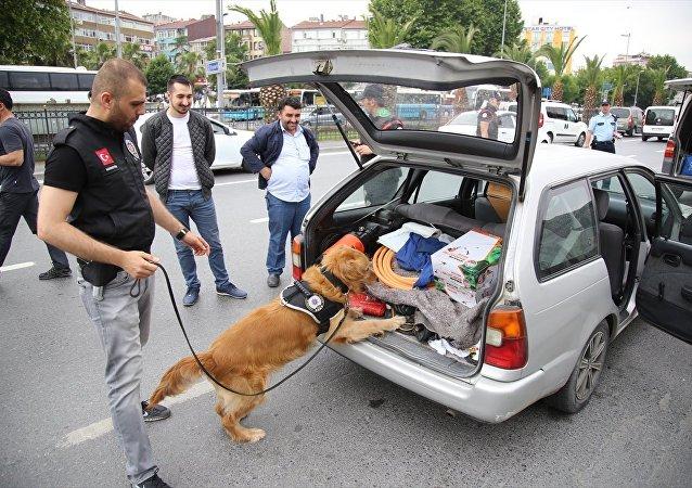İstanbul'da polis operasyonu