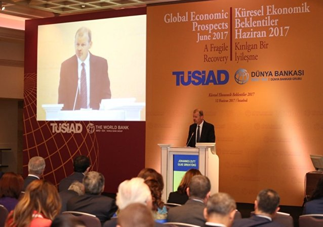 Dünya Bankası Türkiye Ülke Direktörü Johannes Zutt
