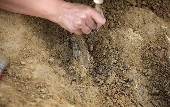 Memelilerin en eski atasının 145 milyon yıllık fosili bulundu