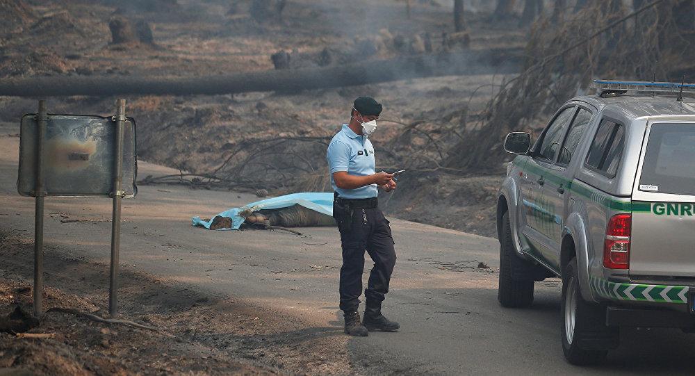 Portekiz'de orman yangını: En az 57 ölü