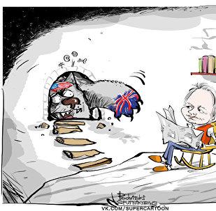 Assange, büyükelçilik binasındaki 5.yılını doldurdu