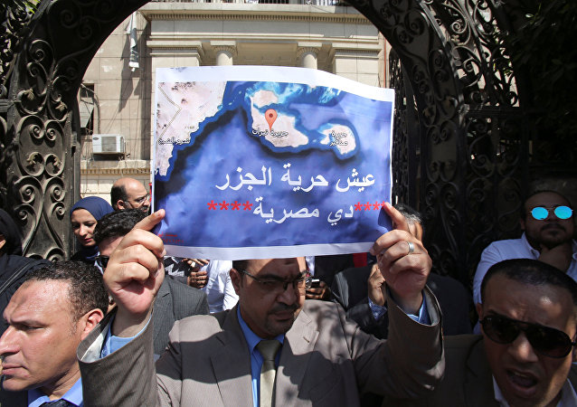 Kızıldeniz'deki adaların Suudi Arabistan'a verilmesini protesto eden Mısırlılar
