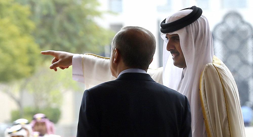 Arap ülkeleri Türkiye'ye destek olan Katar'a öfkeli