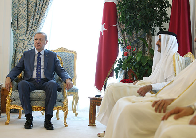 Cumhurbaşkanı Erdoğan ve Katar Emiri Şeyh Temim