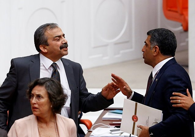 HDP'li Sırrı Süreyya Önder ve CHP'li Gürsel Erol