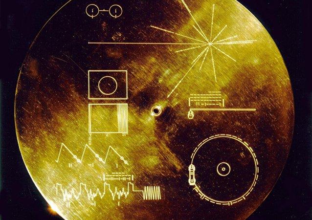 Voyager Altın Plak