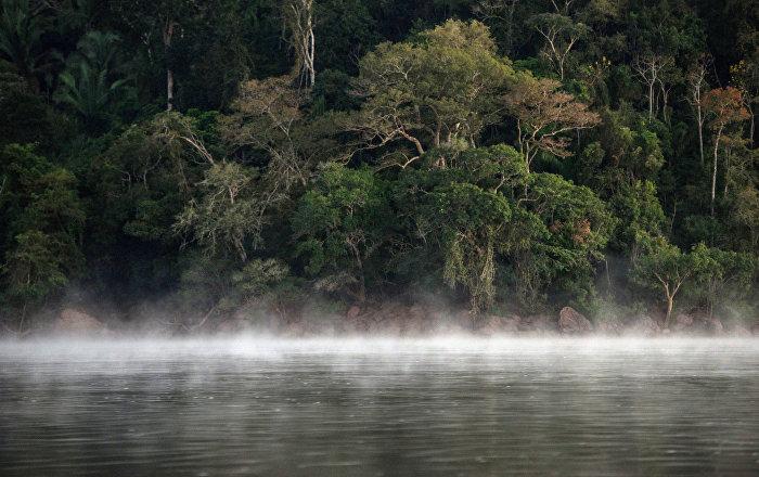 Brezilya'dan doğal kaynaklarına zarar veren Türkiye'ye ders