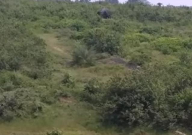 Hindistan'da 50 yaşındaki bir adamı birlikte selfie çekmeye çalıştığı fil ezdi. Yaşlı adam hayatını kaybetti.