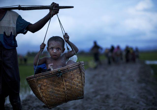 Rohingya sığınmacıları