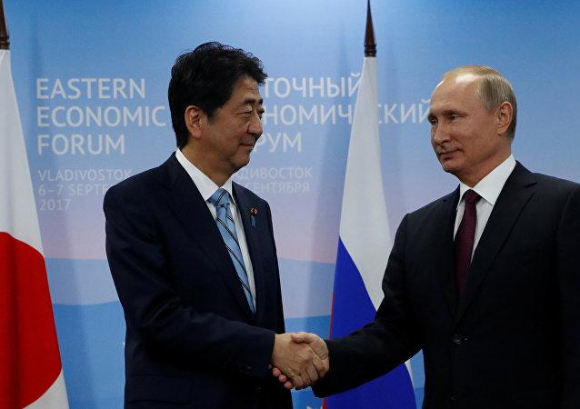 Rusya Devlet Başkanı Vladimir Putin ve Japonya Başbakanı Şinzo Abe