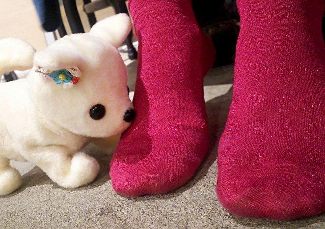 Ayak kokusunu ölçen robot köpek 'Hana'