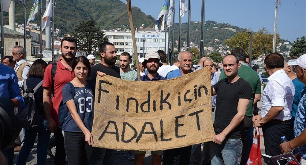 CHP'nin 'Fındık İçin Yürüyoruz' etkinliği