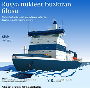 Dünyanın en güçlü nükleer buzkıran gemisi 'Sibir'
