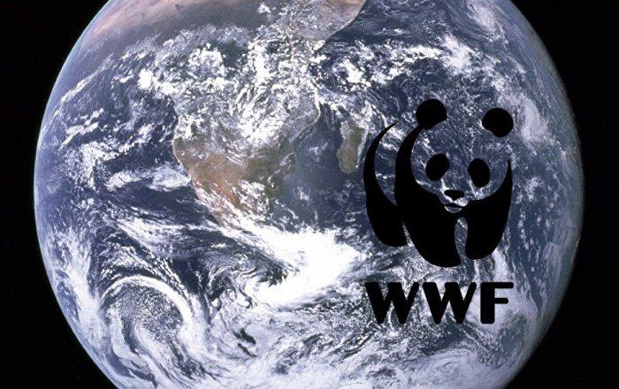 Doğal Hayatı Koruma Vakfı Kuzey Kore bombasının radyasyonu tüm kıtalara