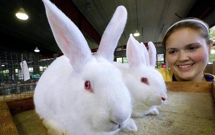 Polonya Sağlık Bakanlığı: Tavşanlar gibi sevişin