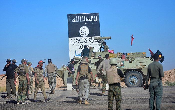 Haşdi Şabi Havice'yi IŞİD'den kurtardı