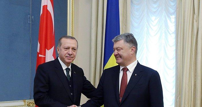 Cumhurbaşkanı Recep Tayyip Erdoğan ve Ukrayna Devlet Başkanı Petro Poroşenko