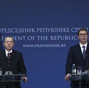 Cumhurbaşkanı Recep Tayyip Erdoğan ve Sırbistan Cumhurbaşkanı Aleksandar Vucic