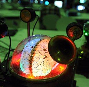 Beyin şeklinde tasarlanmış bir bilgisayar