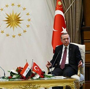 Cumhurbaşkanı Recep Tayyip Erdoğan ve Irak Başbakanı Haydar el İbadi