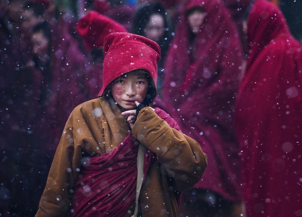 SIPA yarışmasının galipleri: Gezgin fotoğrafçıların en iyi çalışmaları