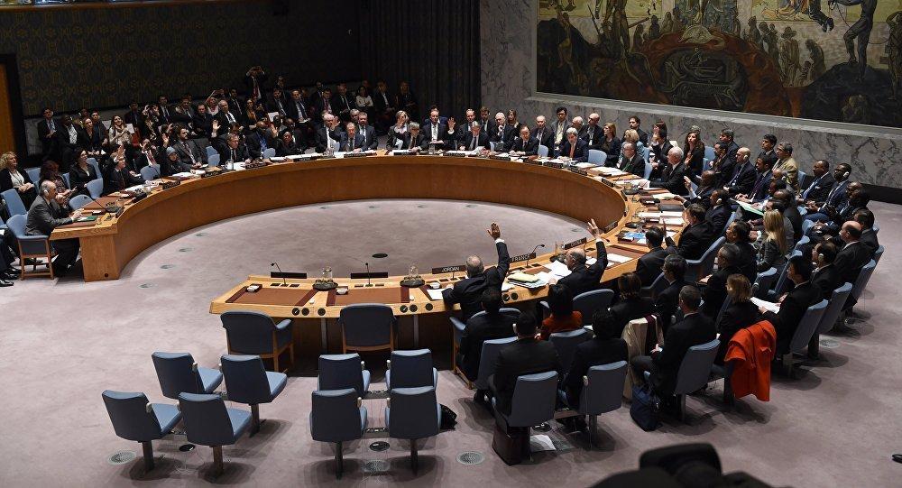Birleşmiş Milletler Güvenlik Konseyi toplantısı
