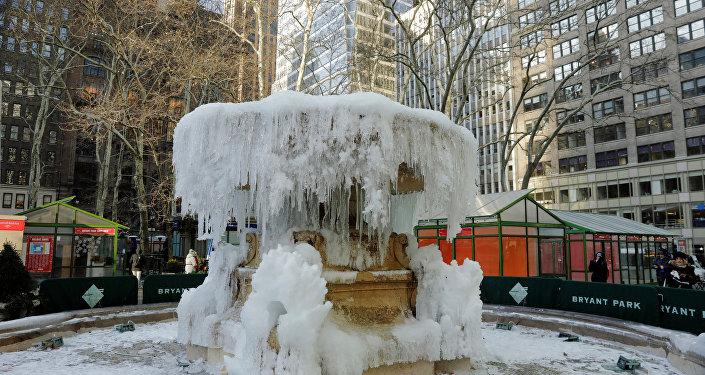 ABD'de soğuk havalar can aldı