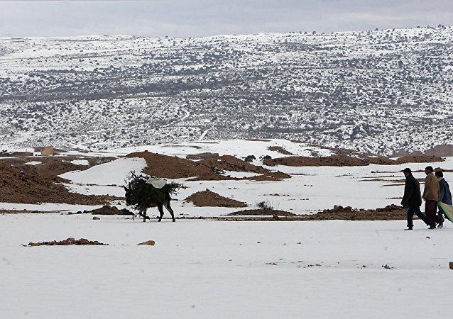 Cezayir'de kar yağışı