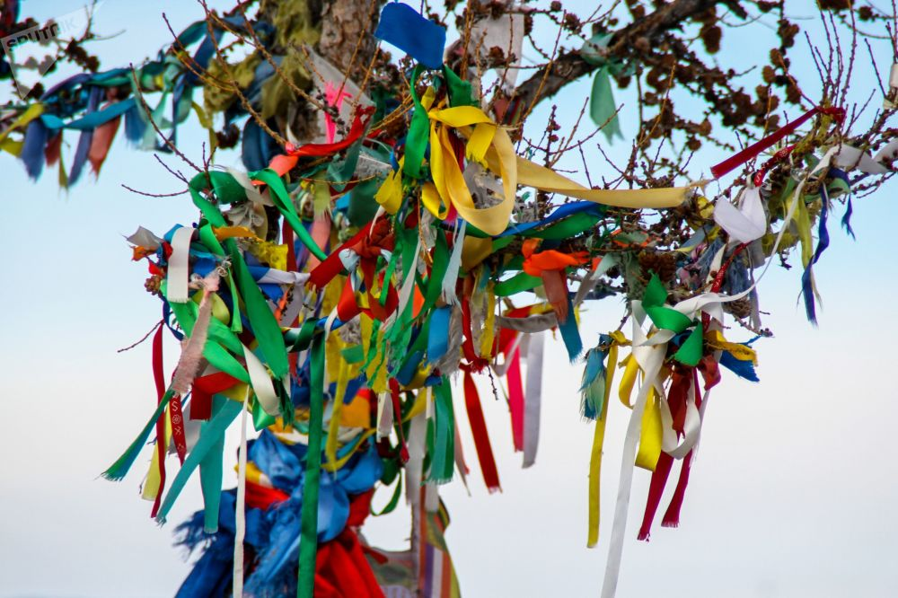 Budist hacılar, Ogoy Adası'nda bulunan stupa yakınlarındaki bir ağaçta şerit bırakıyor.