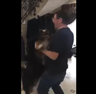 Ukrayna Başsavcısı Yuriy Lutsenko'nun Bernese dağ köpeği cinsi, Churcill isimli köpeği ile dans ettiği görüntüler internete yansıdı. Görüntüler, izleyenleri güldürdü.