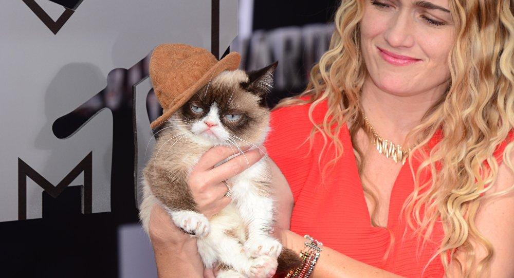 Grumpy Cat Huysuz Kedi
