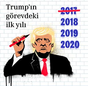 Trump'ın görevdeki ilk yılı