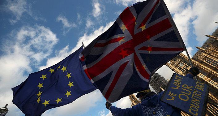 İngiltere parlamentosu önünde Brexit karşıtı bir gösterici