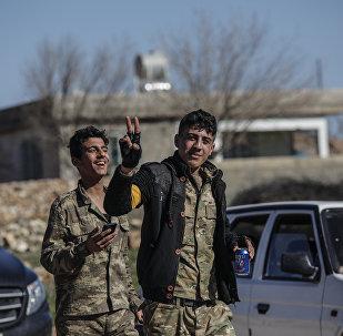 Özgür Suriye Ordusu (ÖSO), Afrin, Zeytin Dalı Harekatı