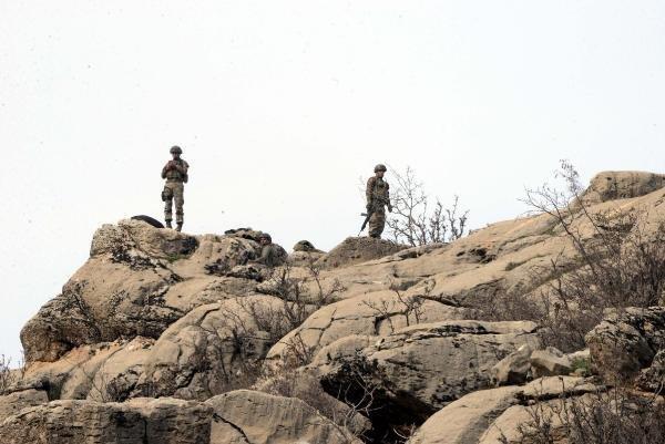 Diyarbakır'da bin 200 asker ve korucunun katılımıyla operasyon