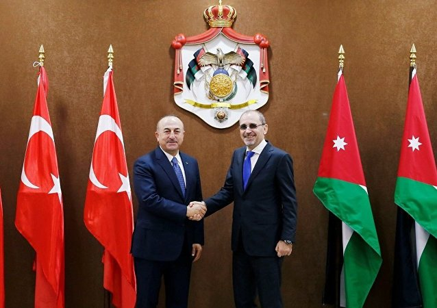 Mevlüt Çavuşoğlu - Eymen Safadi