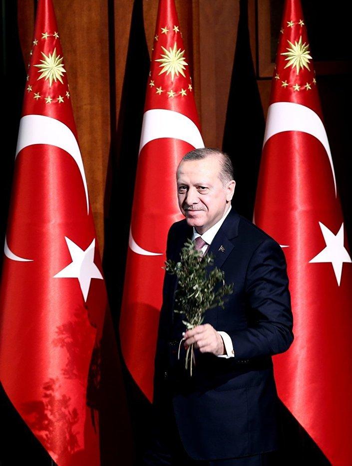 Cumhurbaşkanı Erdoğan, kürsüye vatandaşların kendisine verdiği zeytin dalı ile çıktı.