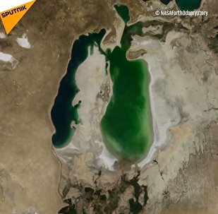 Dev gölden çöle dönüşen Aral
