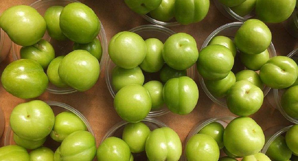 Yeşil eriğin kilosu 500 lira 91