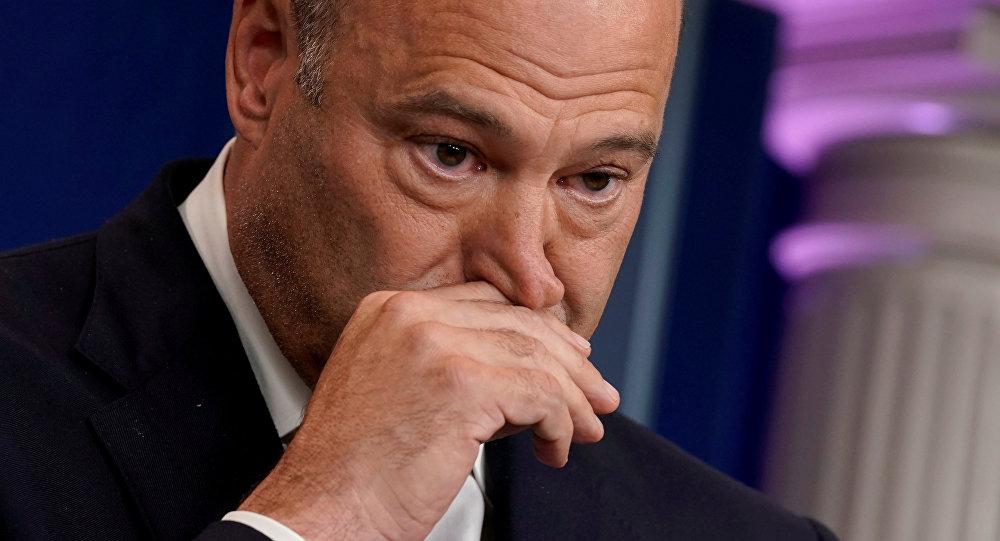 Beyaz Saray Başekonomi Danışmanı Gary Cohn
