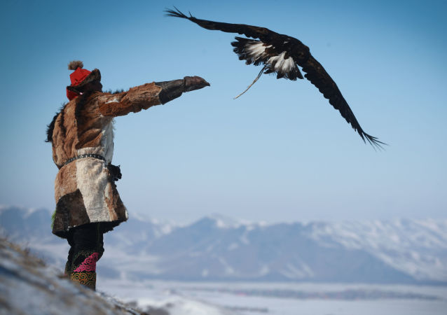 Moğolistan'da Kartal Festivali