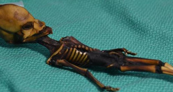 Şili'nin Atacama Çölü'nde bulunan 'Ata' adlı mumyalanmış insan fetüsü