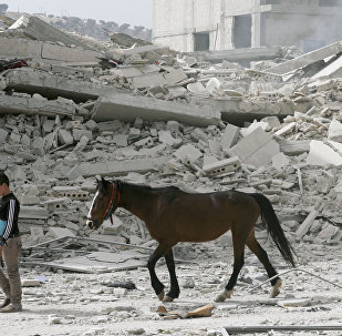 Afrin yıkım at çocuk