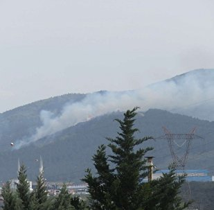 Aydos Ormanları yanıyor