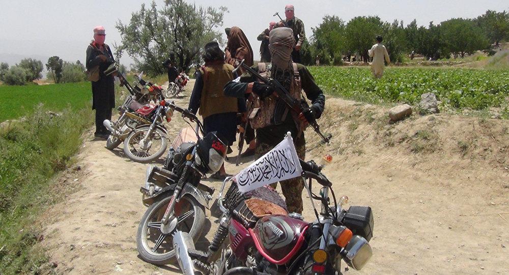 Afghanistan, Paktia eyaleti, Gardez kenti, Ahmed Aba kırsalı, Taliban savaşçıları, 18 Temmuz 2017