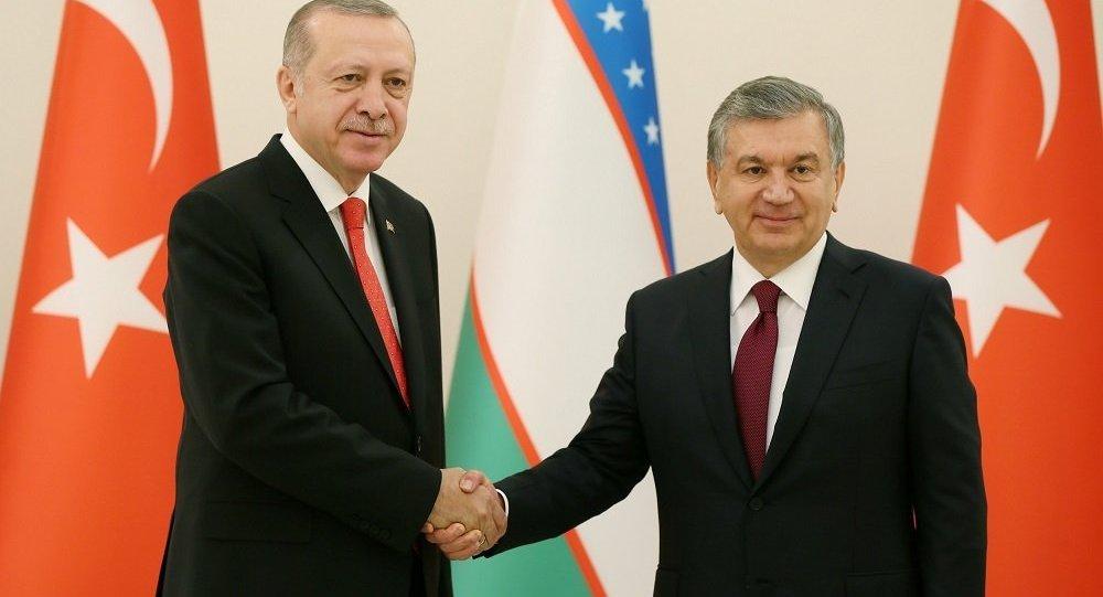 Cumhurbaşkanı Recep Tayyip Erdoğan - Özbekistan Cumhurbaşkanı Şevket Mirziyoyev