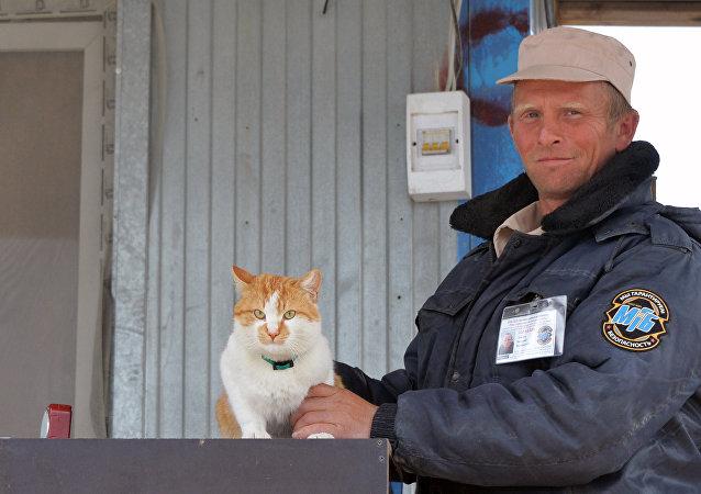 Kedi Mostik