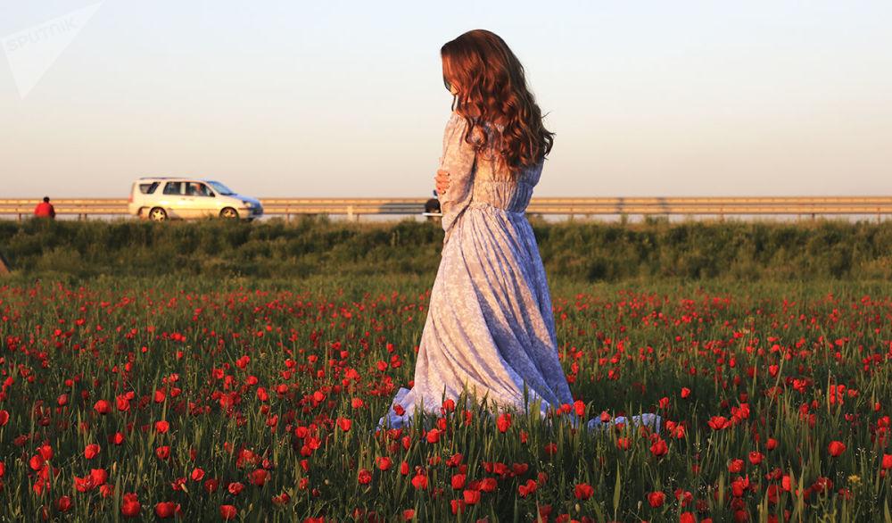 Kazakistan'ın gelincik tarlaları