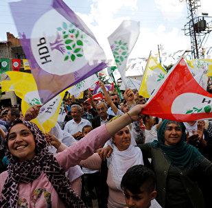 HDP bayrağı, seçmeni