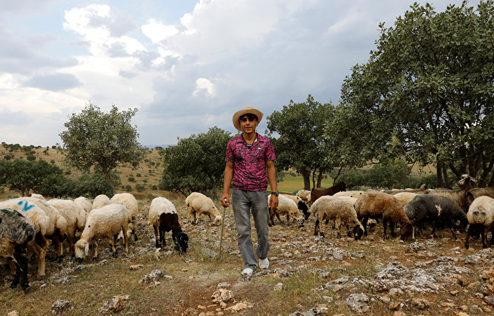 Diyarbakırlı çiftçi Demhat Tari, okulu terk edip gurbete çalışmaya gittiği halde pahalılık nedeniyle para biriktiremediğini, ufukta evlenebileceği şartların gözükmediğini anlattı.